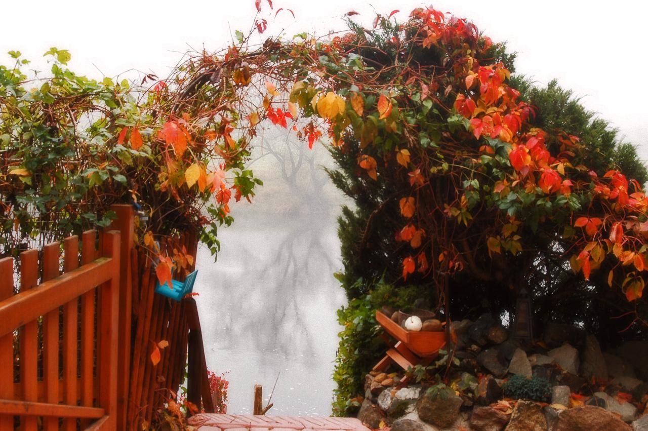 outono-10
